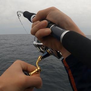 【ショアジギング】6/19越前海岸地磯へ朝練釣行!