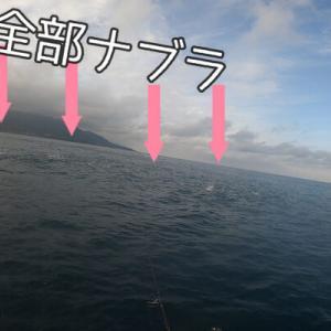 【カヤックフィッシング】立ってキャスト!ナブラのど真ん中にプラグをぶち込む!春の青物祭り! in 福井