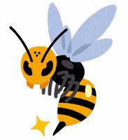 【死亡】ハチに刺されアナフィラキシーショックか...国道の草刈りをしていた男性(38)死亡
