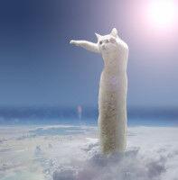 【訃報】猫画像加工ブームの火付け役、胴長猫「のびーるたん」旅立つ