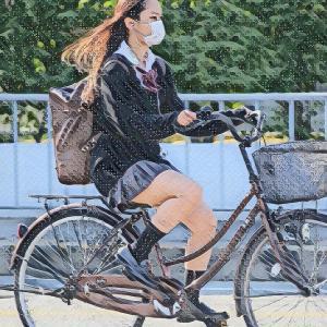 【とび職の男】自転車に乗っていた少女を停止させ靴を脱がして股間に押し当てる奇行