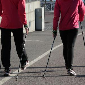 ウォーキングと散歩 やり方の違いは?効果が出るまでの期間や消費カロリーの違いは?
