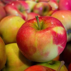 リンゴ酢のダイエット以外の効果とは?自家製の作り方と保存方法 飲むタイミングは?