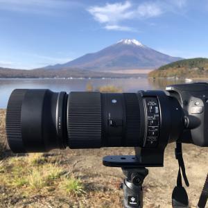 【レビュー】SIGMA contemporary 100-400mmの望遠レンズを買ったので写真や特徴をまとめておく