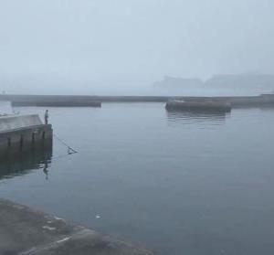 3週連続の沼ノ内港で釣り!早朝きもちいい来週はどうしようかな~
