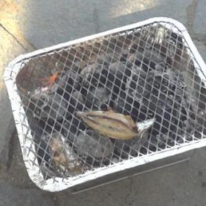 3度目のアジ釣りの結果は?初の一人BBQもやってみました!