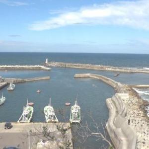台風で釣り中止して午後からぶらぶら港巡りしてきました。