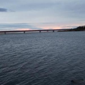 いわき市夏井川河口で一人でハゼ釣りしてボウズでした