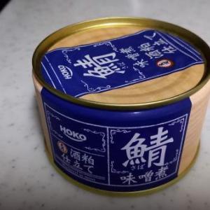 鯖味噌煮で銀のやついただきました最高ですね