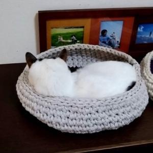 夏用にゃんこベッドを編んだのですが…