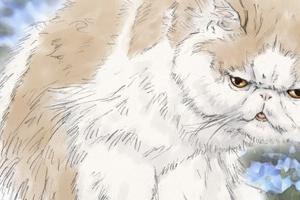 【イラスト】猫:そもさん×せっぱ
