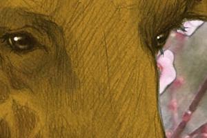 【イラスト】2006年に描いたあれこれ④