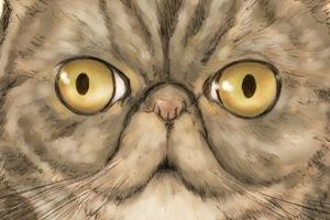 【イラスト】猫:うずだま