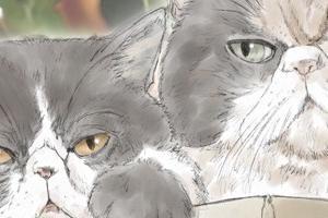 【イラスト】猫:ぬーべー×みかん