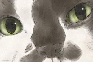 【イラスト】猫:じゅじゅ