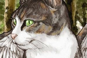 『夜明けの続唱歌』の登場人物 : 猫鶏鐘(にゃんこっこ)