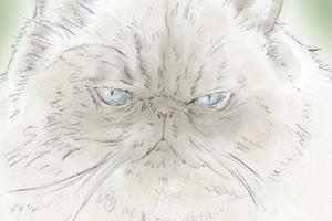 【イラスト】猫:ぐーぐーちゃん【似顔絵】