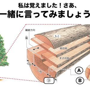 木材 種類と木材の特徴
