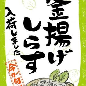 【そうだ、鎌倉に行こう②】海旬処「魚華」。マグロしらす丼とお豆腐がうまし。