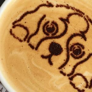 HOLIDAY COFFEE (ホリデーコーヒー)  | 大宮