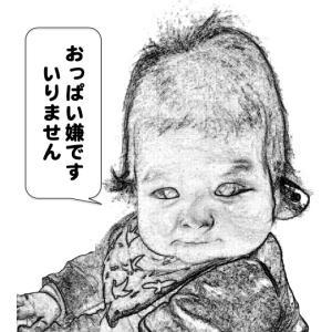 突然の直接授乳拒否!まさかの哺乳ストライキです。