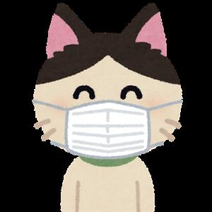 米保健当局、外出時の布製マスク着用を検討 米紙が内部資料入手