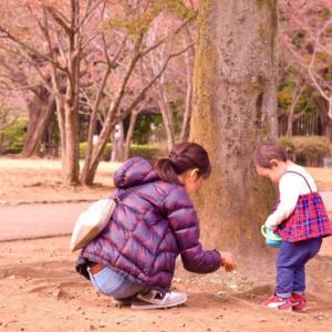 1歳3カ月の公園へ行く頻度・時間帯・遊び方まとめ