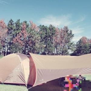 言わせて!ファミリーキャンプのテントはスノピのアメニティドームMで決定ということ