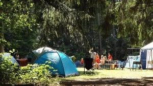 キャンプ用品いろいろ買っちゃいました!夏キャンプこれで快適に!