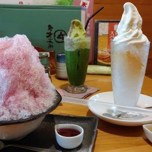 おかげ庵の夏季限定大きなかき氷!冷たいデザート3種類を実食