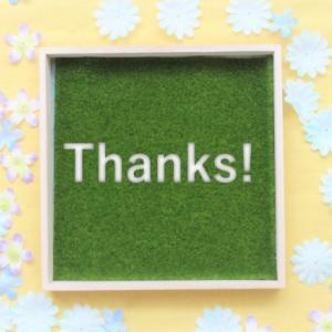 ブログ半年少々が過ぎました!皆様誠にありがとうございます
