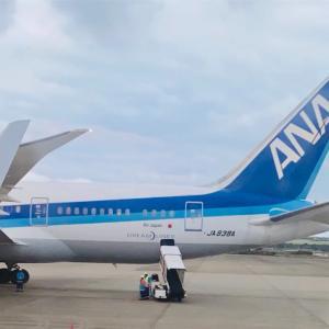ANA SFCを取得するか・・・JALにJGCで乗り続けるか