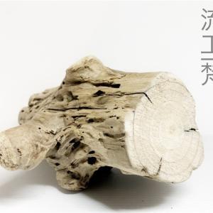 4/14 アクアリウム流木製作 枝の集合体「ブランチウッド風アレンジ流木」