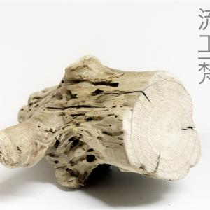 アクアリウム水槽、メダカ水槽ビオトープ、インテリアDIY素材の流木あります。(ヤフオク5/6終了分)