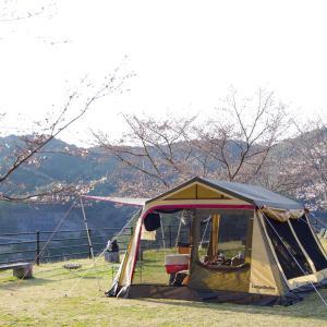 桜咲き始めのお花見キャンプ@北房もみじ公園キャンプ場