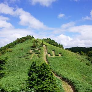 泉山、笠菅峠~山頂ピストン(岡山県鏡野町)