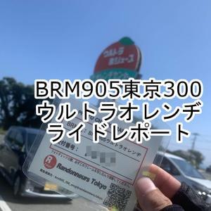 2020BRM905東京300ウルトラオレンヂ実走レポート