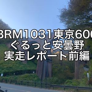 【ブルベ】2020BRM1031東京600 ぐるっと安曇野 実走レポート前編