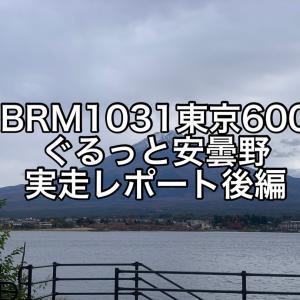 【ブルベ】2020BRM1031東京600 ぐるっと安曇野 実走レポート後編