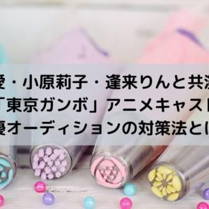 「東京ガンボ」アニメキャスト声優オーディションの対策法とは?