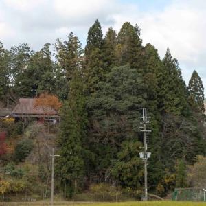 写真で散歩気分!秋の奈良県室生の里