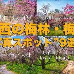 """【2020年】関西の『梅林・梅園』おすすめ写真スポット""""9選""""を紹介! 開花情報や見頃情報などを実際に訪れ撮影した写真とお届けします!"""