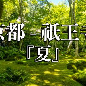京都府 祇王寺 (新緑に染まる青もみじと床一面の苔の美しい景色!京都の初夏、梅雨の時期におすすめの写真スポット! アクセスや見どころなど)