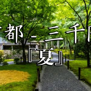 京都府 三千院 (青もみじと苔の新緑が美しい庭園.  初夏、梅雨の時期におすすめの写真スポット! アクセスやあじさい苑情報など)