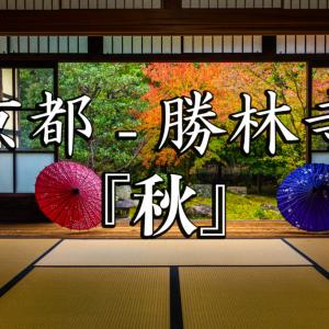 京都  勝林寺(紅葉と和傘の風情を感じる景色が美しい秋におすすめのスポット!撮影した写真の紹介、アクセス情報など)