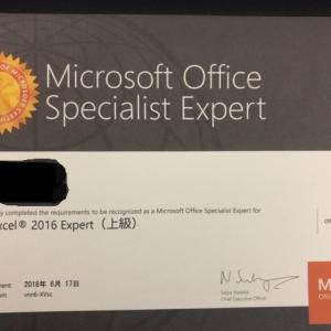 【実体験】MOS Excel(エクセル)エキスパートを1ヶ月で取得した私が勉強方法を教えます