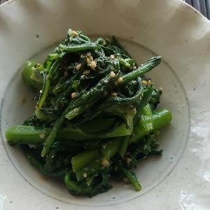 サッと茹でて和えるだけ。簡単で、栄養補給もできる 春菊の胡麻和え