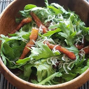 生のままでも美味しく食べれる。手間なく簡単!春菊のサラダ