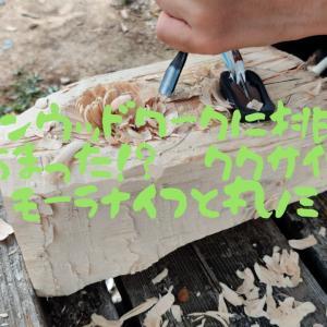 グリーンウッドワークに挑戦④ やっちまった!? ククサ 作りと モーラナイフと丸ノミ