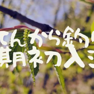 【てんから釣り】今期初入渓!